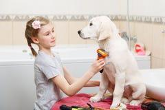 Preparação da menina de seu cão em casa foto de stock royalty free