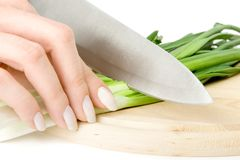 Preparação da salada Imagens de Stock
