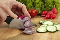 Preparação de uma salada Imagens de Stock Royalty Free