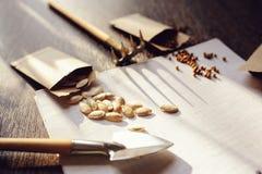 preparação do jardim da mola para semear as sementes vegetais e planeá-las foto de stock
