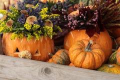 Preparação dos arranjos das abóboras e de flores para o conceito da celebração de Dia das Bruxas imagem de stock royalty free