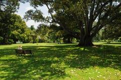 Preparação e beleza dos parques Foto de Stock Royalty Free