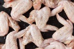 Preparação para o assado - asas de galinha Foto de Stock