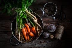 Preparação para o caldo saboroso com cenouras, salsa e alho-porro Fotos de Stock