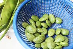 Preparação vegetal tailandesa Foto de Stock
