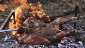 Prepara??o da galinha, ca?ando o tema Cozinhando um corpo inteiro do fais?o em espetos de um ferro sobre uma fogueira com carv?es video estoque