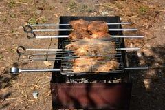 Preparación, cocinando kebabs en el carbón de leña al aire libre Imágenes de archivo libres de regalías