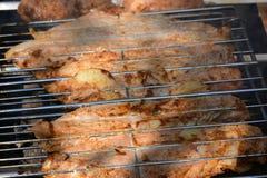 Preparación, cocinando kebabs en el carbón de leña al aire libre Imagen de archivo