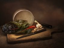Preparación de comida vegetal del cardo suizo de Ruby aka, aún vida con ajo Pintura de la luz del estilo del claroscuro Vulgaris  foto de archivo