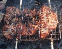 Preparación de la carne del pollo en los carbones parrilla Imagen de archivo