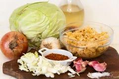 Preparación de la chucrut del kimchi y de la col Fotos de archivo libres de regalías