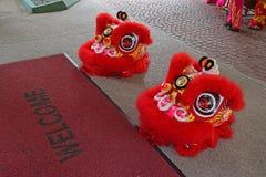 Preparación de la demostración o del funcionamiento de la danza de león durante período chino del Año Nuevo Foto de archivo libre de regalías
