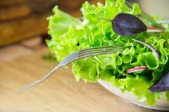 Preparación de la ensalada con el rábano, la lechuga, la cebolla roja y las hojas de la albahaca Dieta o concepto de la comida de Imagen de archivo