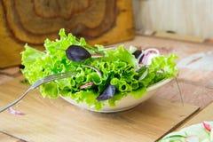 Preparación de la ensalada con el rábano, la lechuga, la cebolla roja y las hojas de la albahaca Dieta o concepto de la comida de Foto de archivo libre de regalías