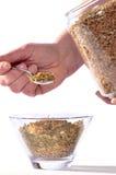 Preparación de la hierba Imagen de archivo libre de regalías