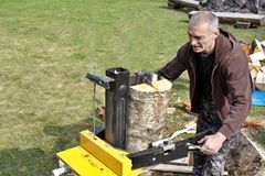 Preparación de la madera para el invierno Imagenes de archivo