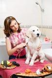 Preparación de la muchacha de su perro en casa Imagen de archivo