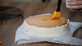 Preparación de la torta, extensión del atasco del albaricoque en las tortas almacen de video