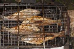 Preparación de la trucha de los pescados frescos en parrilla eléctrica Foto de archivo