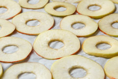 Preparación de las manzanas para secarse Imágenes de archivo libres de regalías