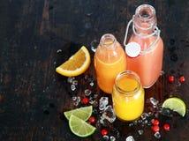 Preparación de los zumos de fruta sanos sabrosos del verano Foto de archivo libre de regalías