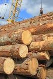 Preparación de madera Foto de archivo libre de regalías