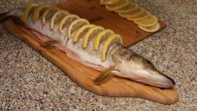 Preparación de pescados con el limón en aceite almacen de metraje de vídeo
