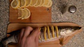 Preparación de pescados con el limón en aceite almacen de video