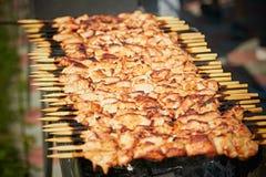 Preparación de un kebab Carne sabrosa en el fuego Primavera Foto de archivo libre de regalías