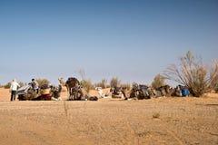 Preparación de una caravana de camellos en el Sáhara Fotografía de archivo libre de regalías