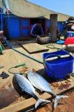 Preparación del almuerzo del pescador en un barco de pesca del atún en el mar de la bahía de Nha Trang Imágenes de archivo libres de regalías