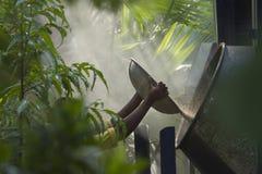 Preparación del cemento en el centro de la selva Foto de archivo
