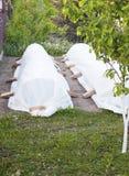 Preparación del jardín antes de la helada Fotografía de archivo libre de regalías