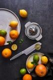 Preparación del jugo Frutas cítricas maduras frescas en fondo oscuro foto de archivo