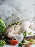 Preparación del pollo Fotografía de archivo libre de regalías