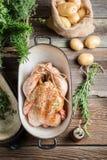 Preparación del pollo para cocinar con las especias y las verduras Fotos de archivo