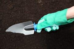 Preparación del suelo para plantar fotografía de archivo
