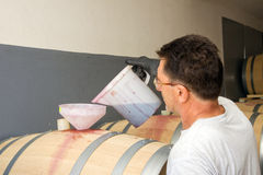 Preparación del vino Imagen de archivo