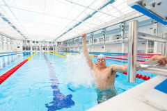 Preparación muscular de Young del nadador que gana Imágenes de archivo libres de regalías