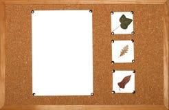 Preparación para una diapositiva de la presentación Imágenes de archivo libres de regalías