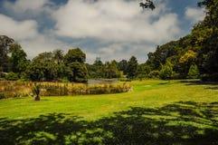 Preparación y belleza de los parques foto de archivo libre de regalías