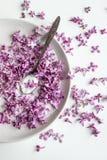 Preparaci?n p?rpura fresca hermosa del blossomsHomemade de la lila del az?car de la lila con fragancia que sorprende fotos de archivo