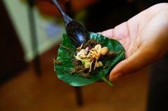 Preparación de la cocina de Tailandia Imágenes de archivo libres de regalías