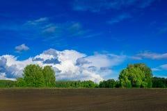 Preparado para sembrar el campo de granja, paisaje de la primavera Fotos de archivo libres de regalías