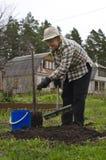 Preparando i letti per le verdure Immagine Stock Libera da Diritti