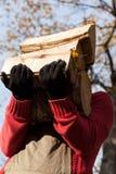 Preparando legno per l'autunno freddo Immagini Stock Libere da Diritti