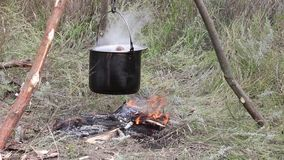 Preparando o alimento na fogueira no acampamento selvagem video estoque