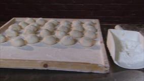 Preparando pasta per essere al forno stock footage