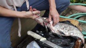 Preparando peixes para o jantar fora na floresta filme