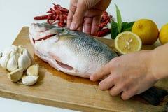 Preparando per il vapore della spigola con il limone, l'aglio ed il peperoncino rosso Fotografia Stock Libera da Diritti